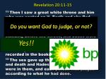 revelation 20 11 154
