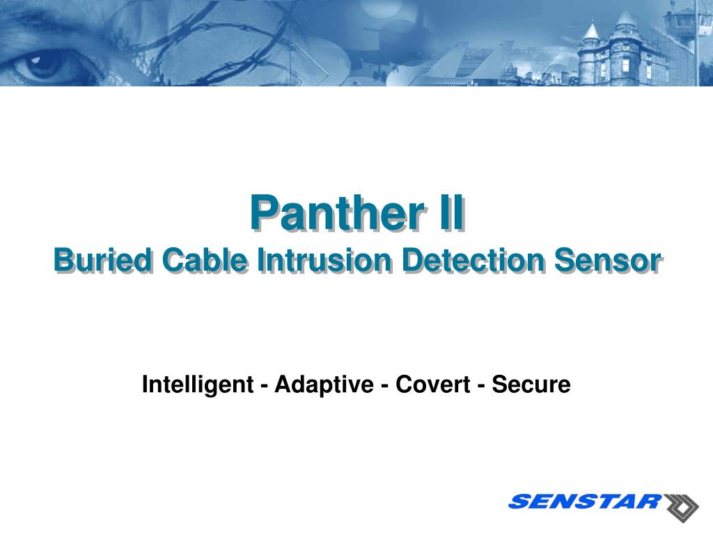 panther ii buried cable intrusion detection sensor l.