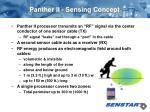 panther ii sensing concept