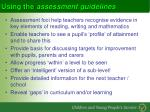 using the assessment guidelines