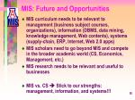 mis future and opportunities
