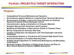 portfolio projectile target interaction11