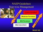 naep guidelines step wise management
