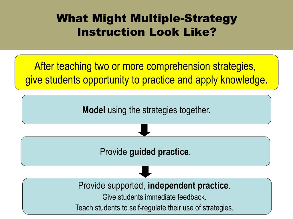 What Might Multiple-Strategy Instruction Look Like?