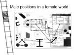 male positions in a female world9