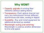 why wdm