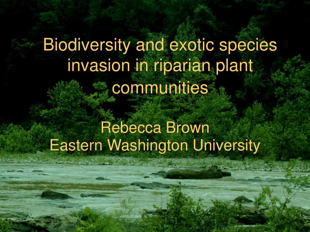 biodiversity and exotic species invasion in riparian plant communities l.