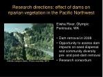 research directions effect of dams on riparian vegetation in the pacific northwest