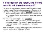 if a tree falls in the forest and no one hears it will there be a sound3
