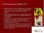formiranje pravog kvaliteta vina