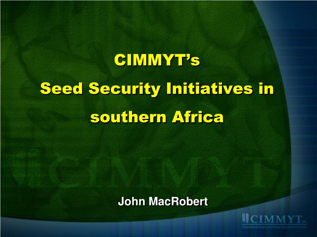 cimmyt s seed security initiatives in southern africa l.