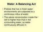 water a balancing act