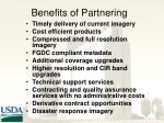 benefits of partnering