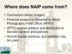 where does naip come from