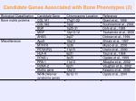 candidate genes associated with bone phenotypes 2