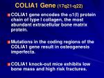 colia1 gene 17q21 q22
