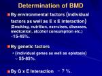 determination of bmd