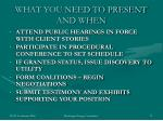 what you need to present and when1