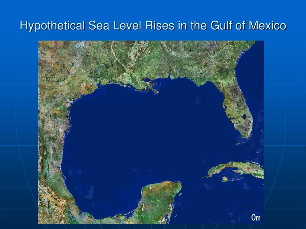 Hypothetical Sea Level Rises in the Gulf of Mexico