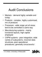 audit conclusions