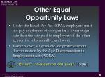other equal opportunity laws