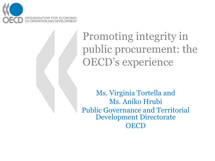 promoting integrity in public procurement the oecd s experience n.