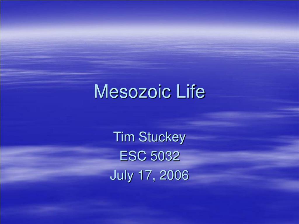 mesozoic life l.