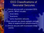 eeg classifications of neonatal seizures