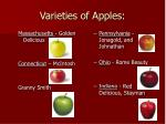 varieties of apples