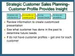 strategic customer sales planning customer profile provides insight