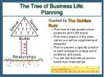 the tree of business life planning