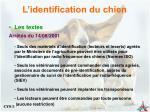 l identification du chien10