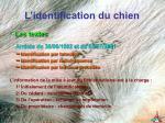 l identification du chien3
