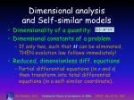 dimensional analysis and self similar models