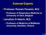 external experts