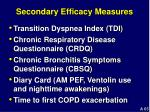 secondary efficacy measures