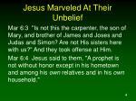 jesus marveled at their unbelief4