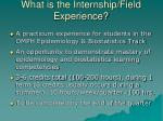what is the internship field experience