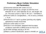 preliminary muon collider simulation jet parameters