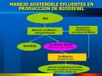 manejo sostenible efluentes en producci n de biodiesel
