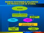 manejo sostenible efluentes en producci n de etanol