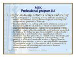 m ik professional program 4