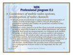 mik professional program 1