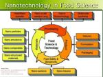 nanotechnology in food science