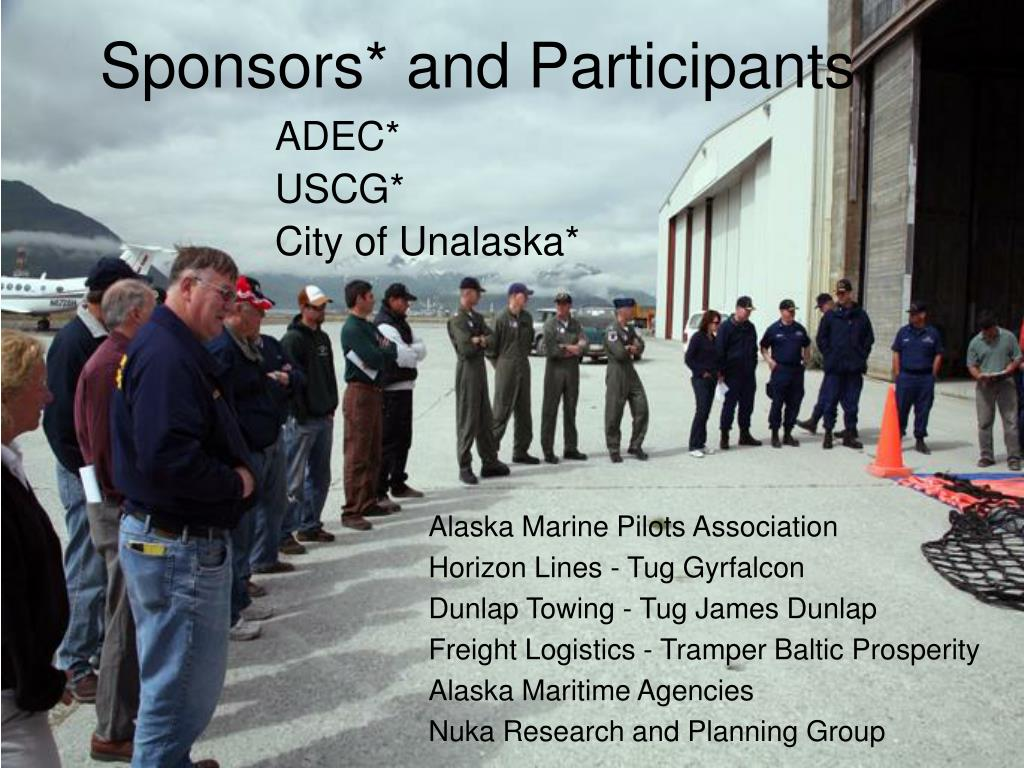Sponsors* and Participants