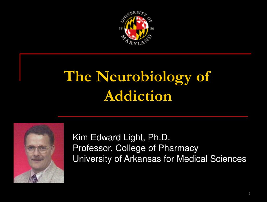 the neurobiology of addiction l.