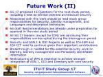 future work i i
