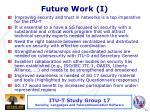 future work i