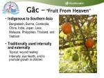 g c fruit from heaven