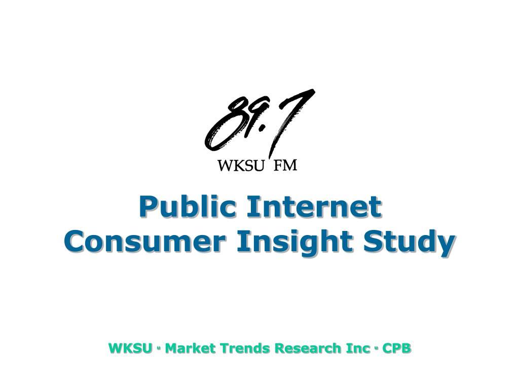 public internet consumer insight study l.